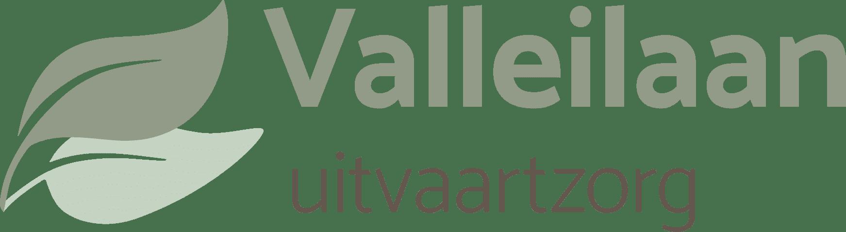 logo valleilaan